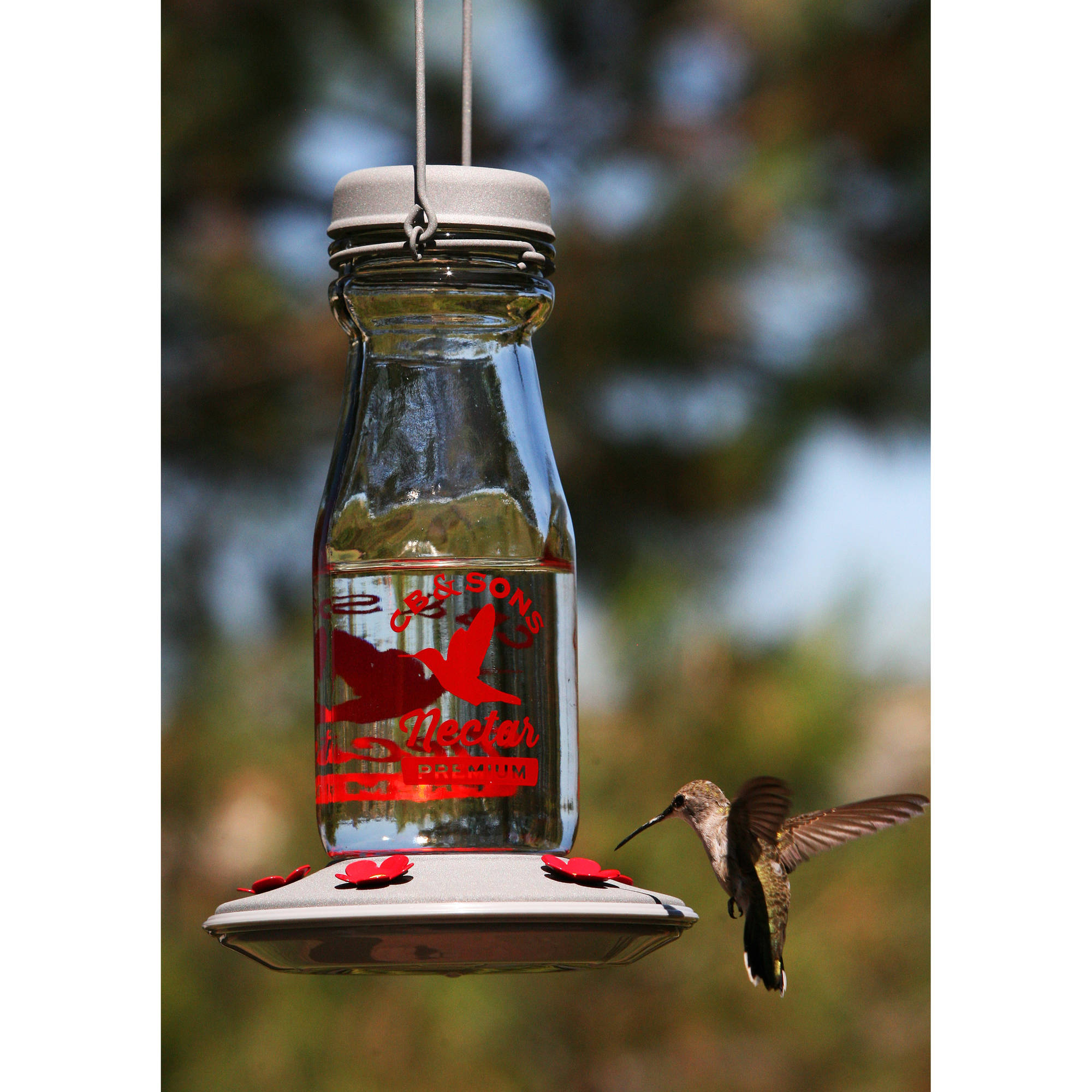 feeder ip hummingbird decorative fl glass jersey feeding com birds more vintage bottle with walmart stations oz feeders capacity milk