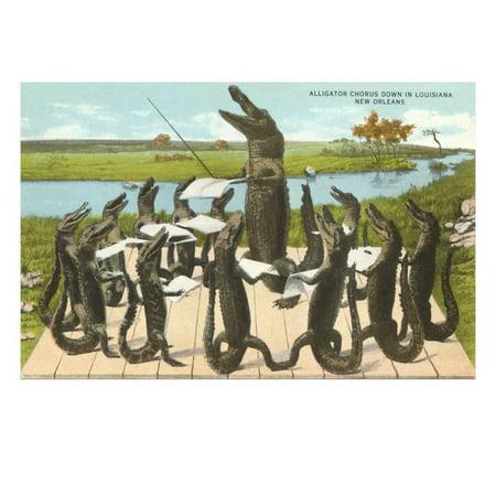 Alligator Chorus in New Orleans, Louisiana Print Wall Art