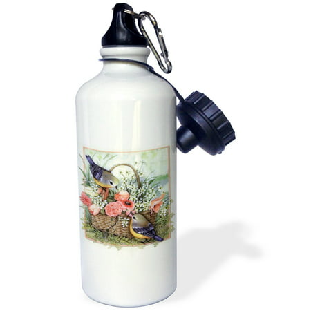 3dRose Pretty sparrows in a beautiful basket of roses , Sports Water Bottle, 21oz