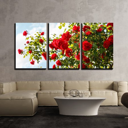 wall26 - 3 Piece Canvas Wall Art - Red Roses Bush in the Garden - Modern Home Decor Stretched and Framed Ready to Hang - 24