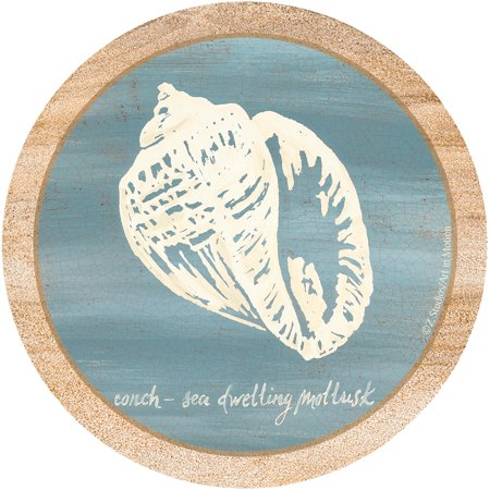 Thirstystone Drink Coasters Set, Imperial Conch