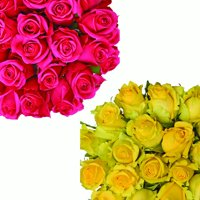 "Natural Fresh Flowers - Assorted Color Roses, 24"", 50 Stems"