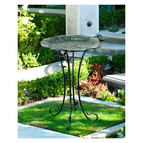 Innova Lily Pad with Sitting Bird Garden Bird Bath