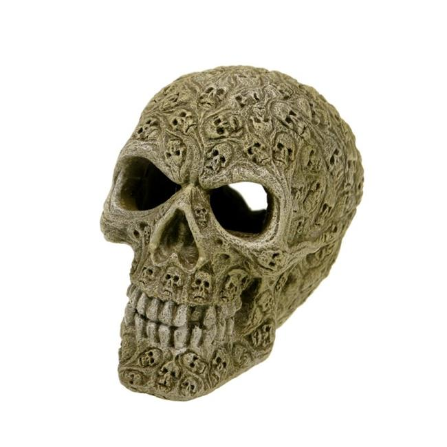 Exotic Environments Haunted Skull, Small