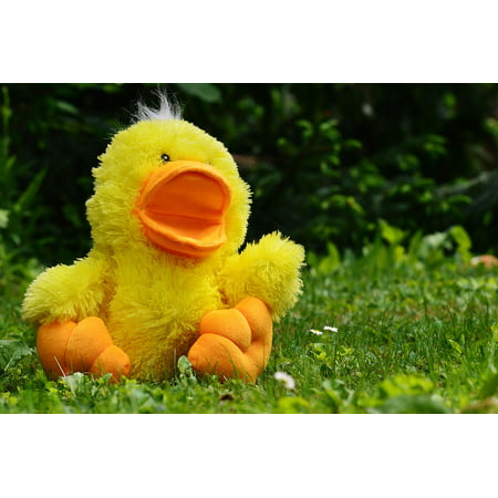 LAMINATED POSTER Soft Toy Duck Funny Children Cute Toys Meadow Poster Print 24 x 36