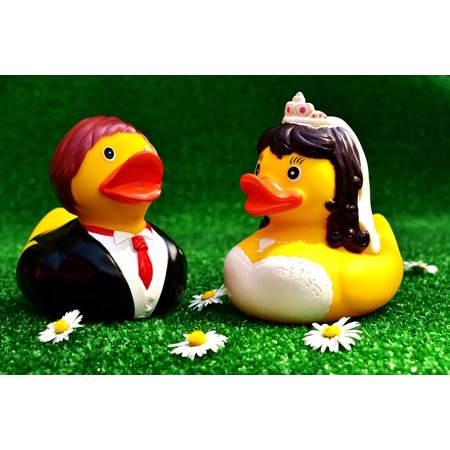 LAMINATED POSTER Wedding Marry Bride And Groom Rubber Ducks Funny Poster Print 24 x 36