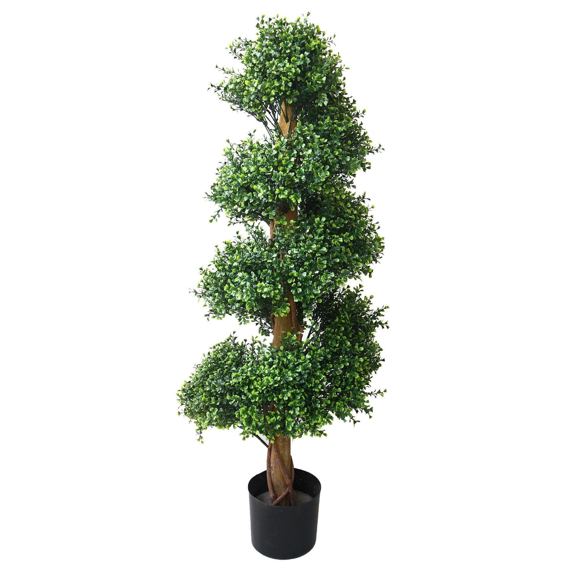 48 In Romano Boxwood Spiral Topiary Tree Walmart Com Walmart Com