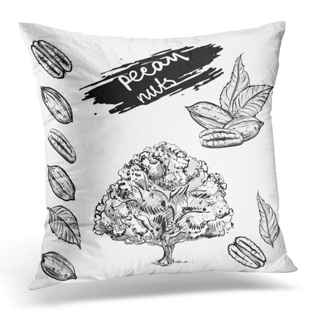 - ECCOT Black Collection Gray Scale of Pecan Nuts Leaf Tree Sketch 8 Drawing Pillowcase Pillow Cover Cushion Case 16x16 inch