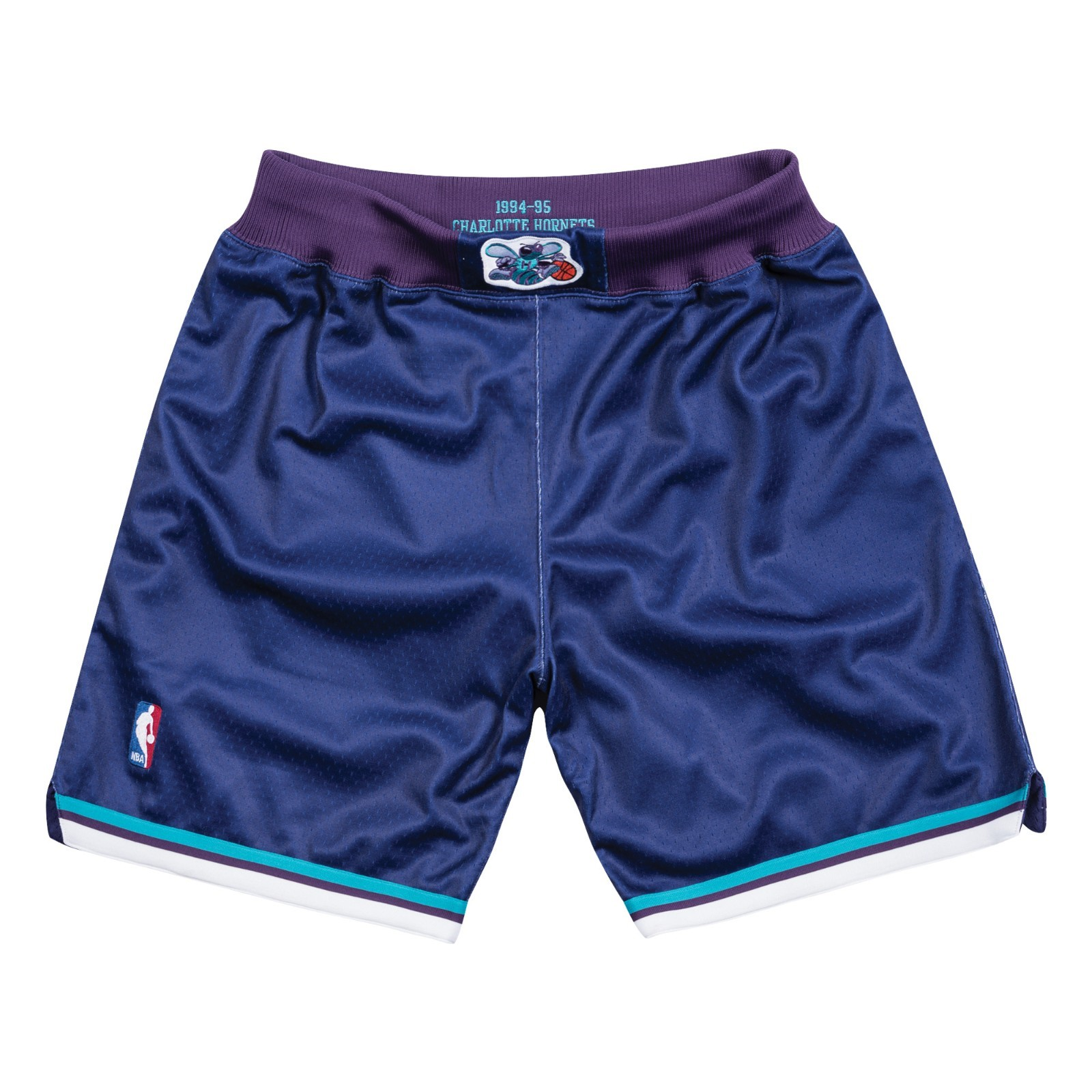 Charlotte Hornets 1994-95 Alternate Purple Mitchell & Ness Authentic Shorts