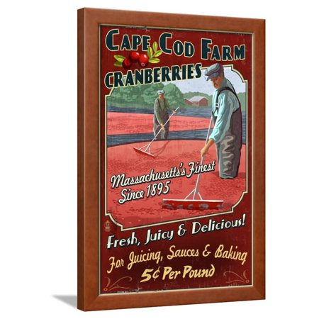 Cape Cod, Massachusetts - Cranberry Framed Print Wall Art By Lantern Press - Pool City Cranberry