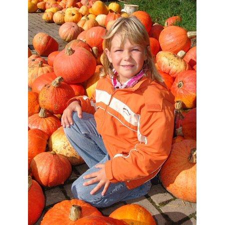 LAMINATED POSTER Pumpkin Autumn Orange Halloween Child Poster Print 24 x - Halloween Kids Posters