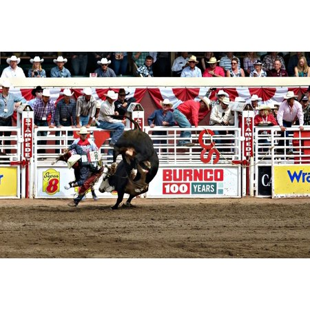 LAMINATED POSTER Calgary Canada Albert Stampede Outdoor Activity Poster Print 24 x 36 ()