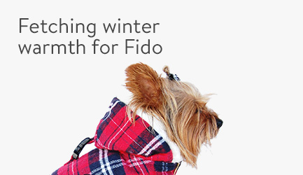 Fetching winter warmth for Fido
