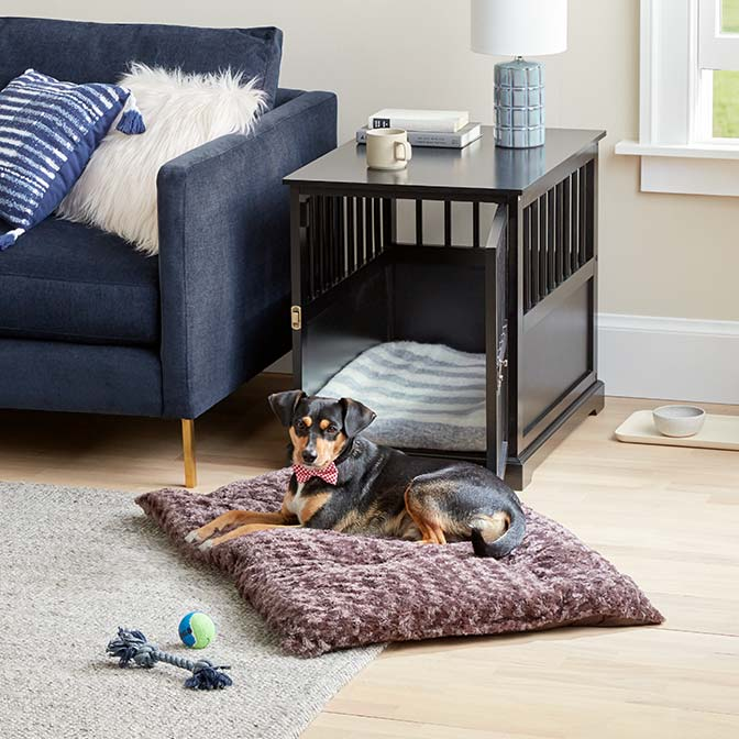 Find furniture for your pup at low prices.