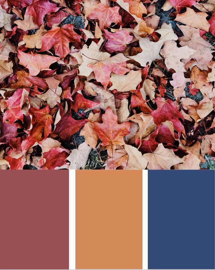 Moody fall color palette