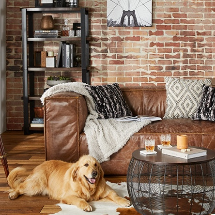An industrial style living room with brick walls, a leather sofa and an iron bookshelf