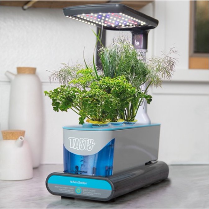 One of the best hydroponics systems from Buzzfeed's Tasty. Starts the hydroponics buying guide.