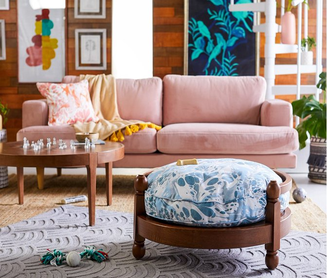 Drew Barrymore Designs For Your Bff Best Fur Friend