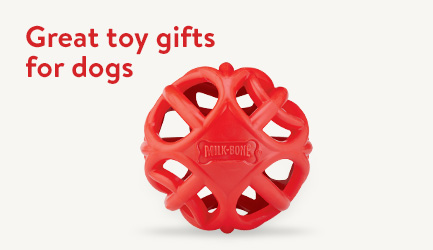 Great toy gifts for dogs