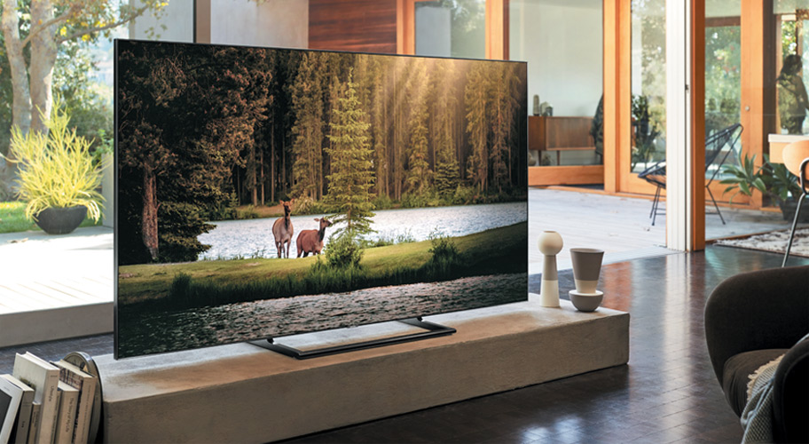 TV with nature views on the screen