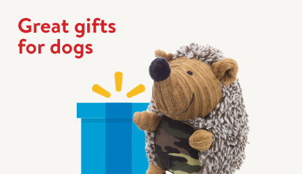 Great gifts for dogs