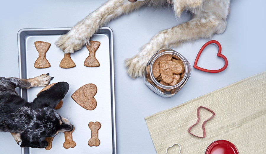 Homemade Dog Treats Your Puppy Will Woof For