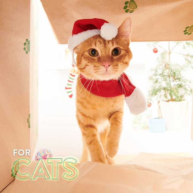 Gifts for cats & cat lovers.