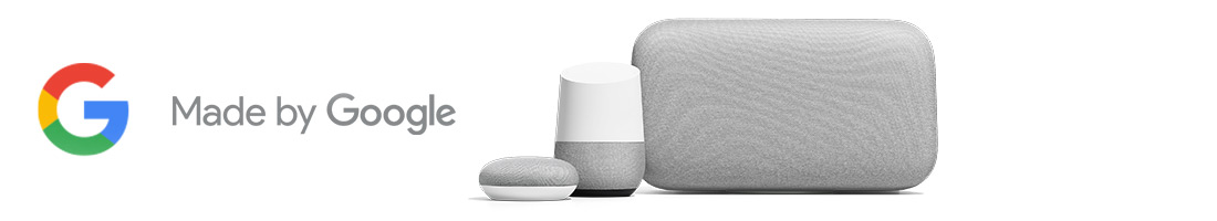 Shelf Header Only: Google Home [Browse - Access Points] (Evergreen Google Banner)