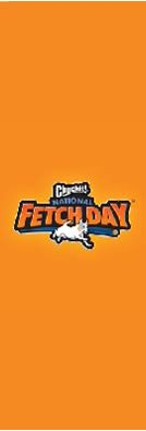 National Fetch Day