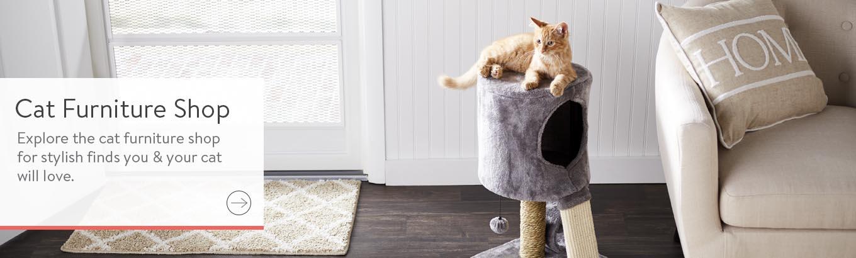 5064b6e3b1d All Cat Toys - Walmart.com