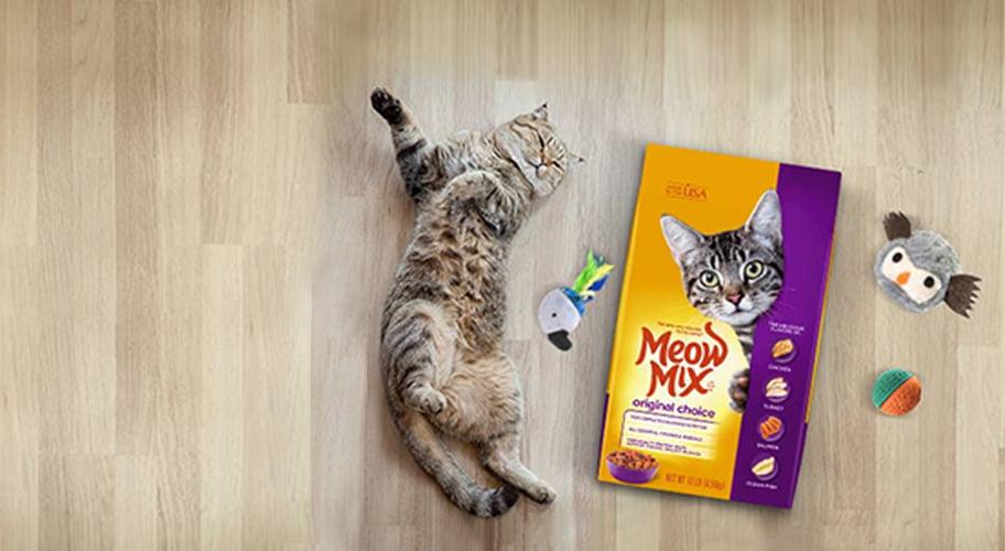 Cat Supplies , Walmart.com