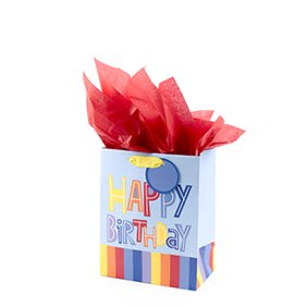 Shop birthday gift bags.