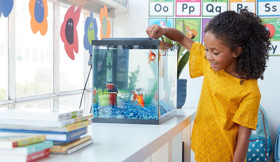 Image result for children fish tank