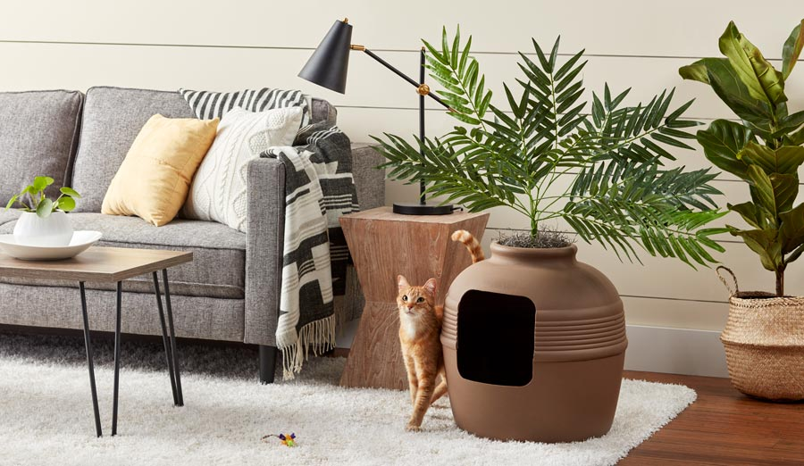 living room with cat planter bed demonstrating cat friendly interior design ideas