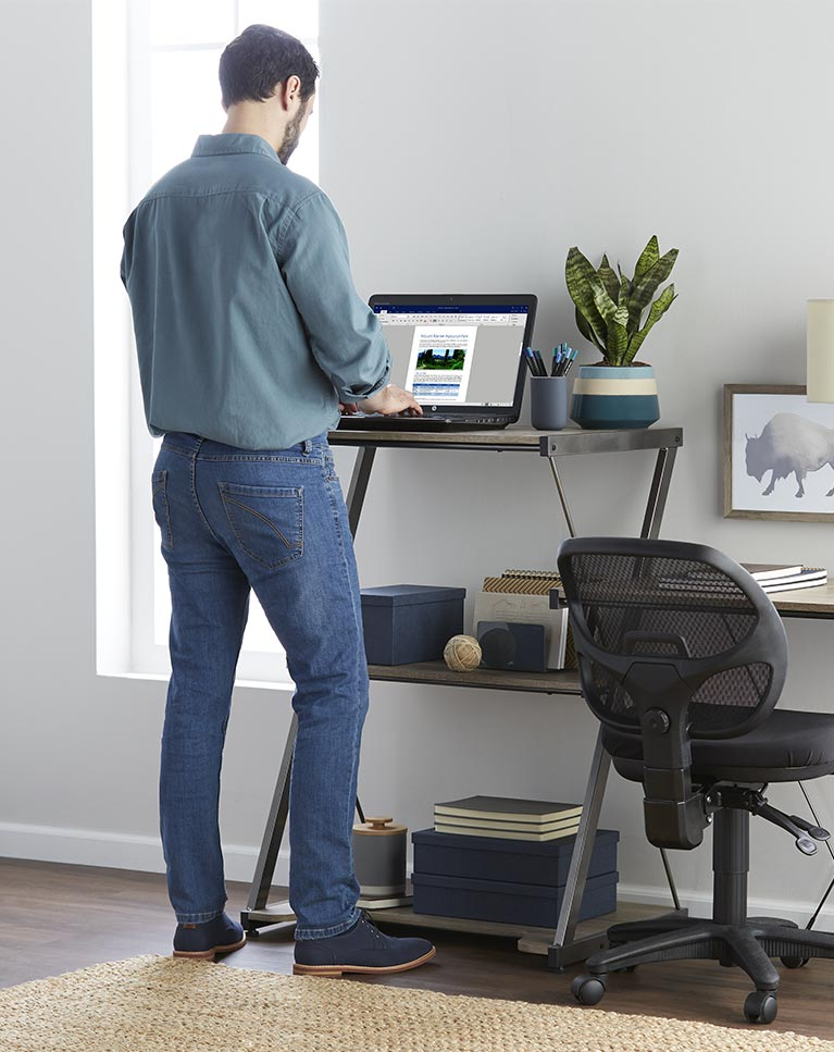 Rising And Standing Desks Ergonomic Chairore