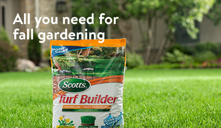 all you need for fall gardening