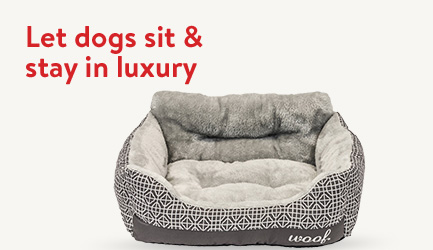 Let dogs sit and stay in luxury. Shop dog gifts now.