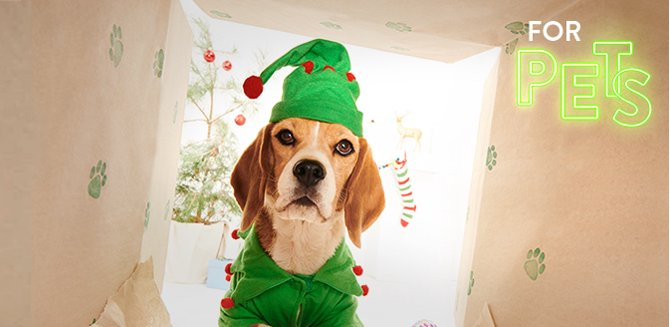 find gifts any pet will love - Christmas Gifts Walmart