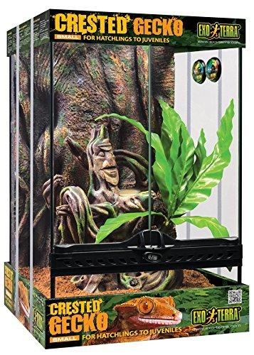 Exo Terra Crested Gecko Habitat Kit, Small