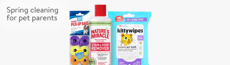 Spring cleaning for pet parents.