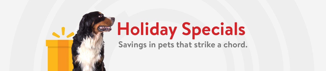 Holiday Specials. Savings in pets that strike a chord.