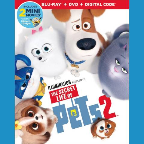 6 to collect 2 Pack Puzzle Erasers Secret Life of Pets LOT OF 3
