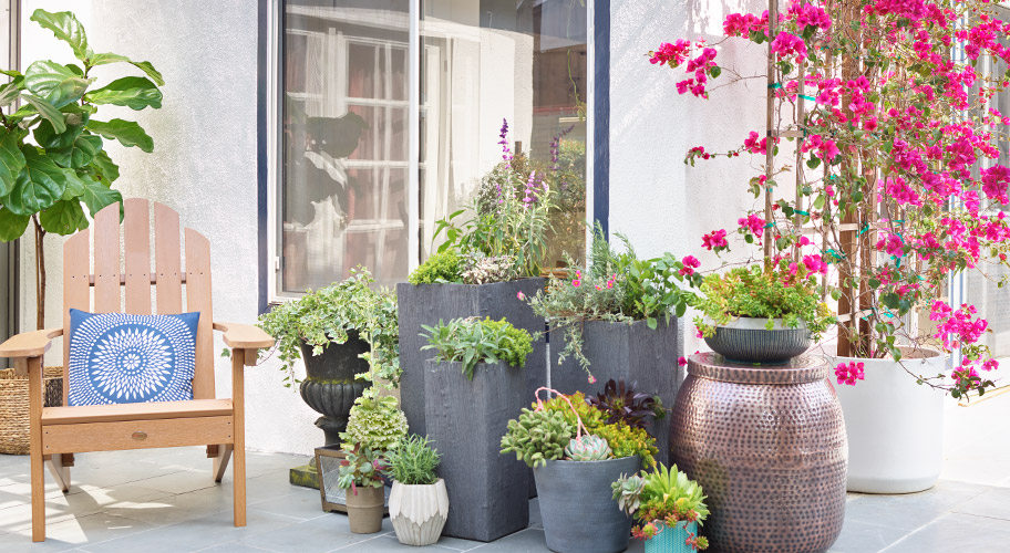 From pots & planters to containers & stands in lots of shapes & sizes, you'll find what you need to get blooming in no time.
