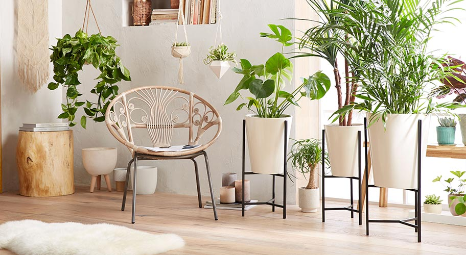Superb Garden Center Walmart Com Creativecarmelina Interior Chair Design Creativecarmelinacom