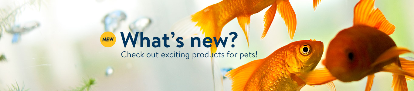 Check out exciting new products for pets!