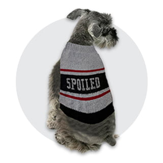 Dog Apparel and Accessories