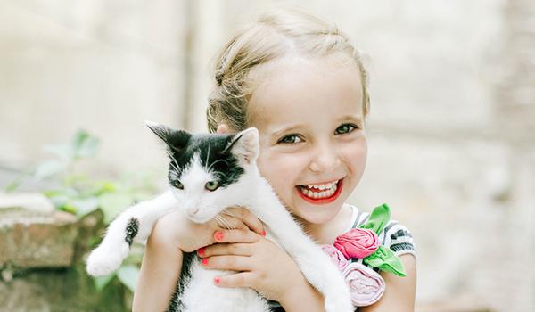 Welcoming your new kitten