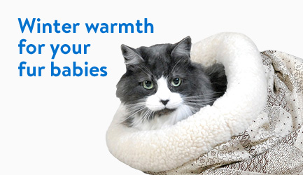 Winter warmth for your fur babies
