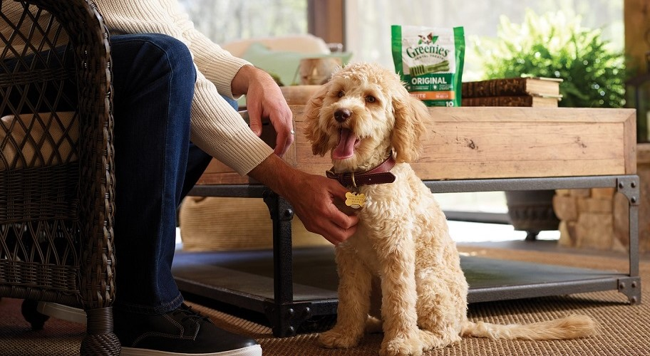 Smile by GREENIES treats. Give them the tasty treat that freshens and cleans.