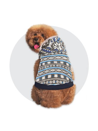 Shop dog winter fashion